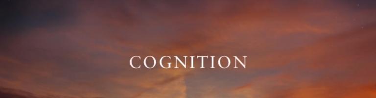 Video Still_Cognition